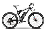 Cyrusher Fat Tire Bike with Motor
